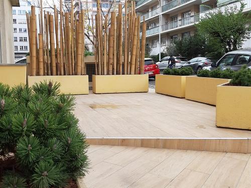 """Terrasse de bureau sur la voie publique, jardinières béton, pins """"Mops"""", brise-vue en cannes de bambous"""