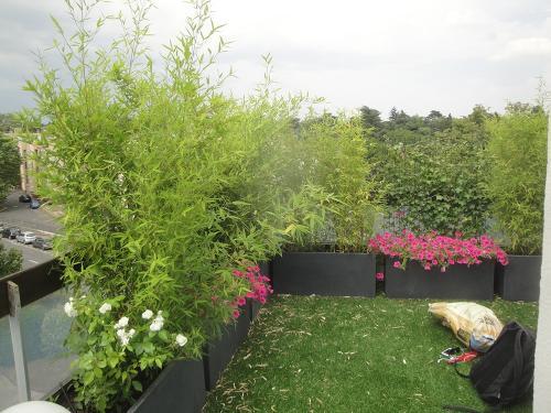 Rideau végétal d'occultation, bambous, lierre et gazon synthétique